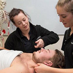 Diploma in Advanced Clinical Massage Therapy Lv6